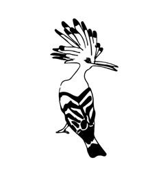 Bird hand drown vector
