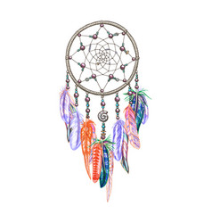 colorful dreamcatcher and feathers isolated on vector image