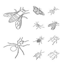 design fauna and entomology logo vector image