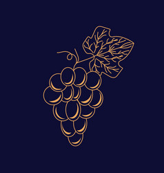 Grape logo icon in linear style for winery vector
