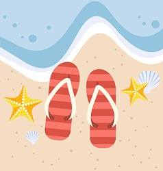 Slippers with starfish and shell on the beach vector image