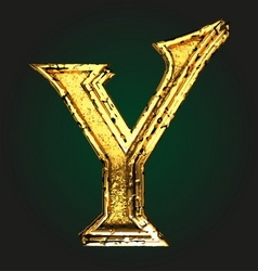 y golden letter vector image vector image