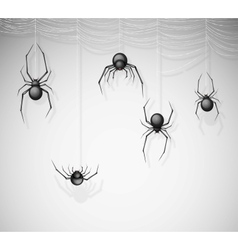 The spiders vector image vector image
