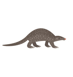 african big reptile pangolin vector image