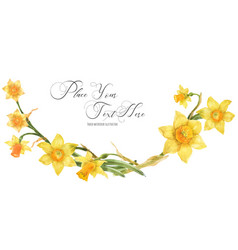 Decorative watercolor arc with yellow daffodil vector