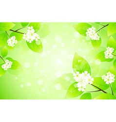 Framing with Blossom vector image