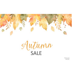watercolor autumn sale banner leaves and vector image
