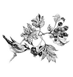 Wild exotic bird on twig vector image
