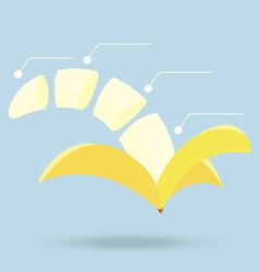 banana slices structure diagram isolated on vector image