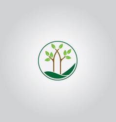 tree nature logo vector image vector image