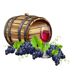 wine barrel with glass and fresh grapes vector image