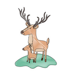 cartoon deer and calf over grass in colored crayon vector image