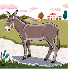 Donkey standing vector