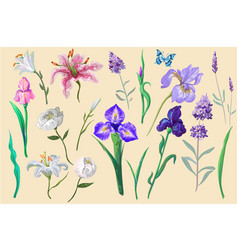 flowers with butterfly collection for different vector image