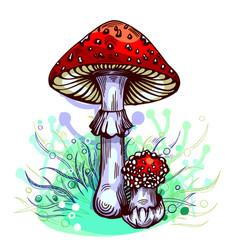 Fly agaric mushroom vector