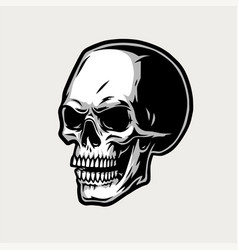 human skull vintage concept vector image