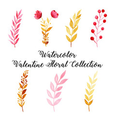 Watercolor valentine floral collection vector