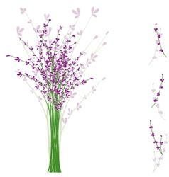 Summertime lavender flower vector