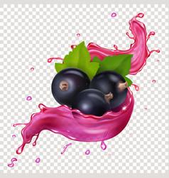 Black currant juice splash berries vector