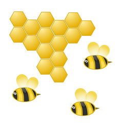 Cartoon bee and honeycomb on white vector