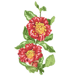 Decorative element in of pomegranate blooming vector