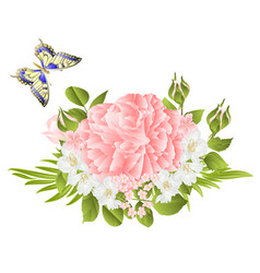 Flower pink rose and buds jasmine and butterfly vector
