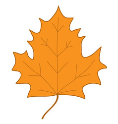 maple leaf orange sign 407 vector image