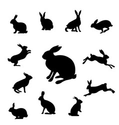 Rabbit set isolated vector