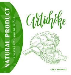 vegetable element of artichoke hand drawn vector image