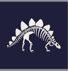 White skeleton and bones of a stegosaurus on blue vector