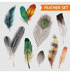 Feathers Realistic Set vector image vector image