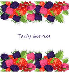 blackberries background banner vector image