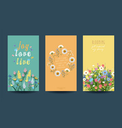 Collection floral cards spring or summer vector