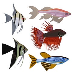 Set of cartoon aquarium fish vector