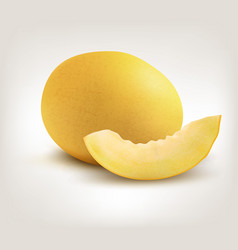 yellow honeydew melon on white background vector image