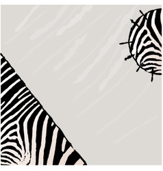 Abstract zebra background vector image vector image