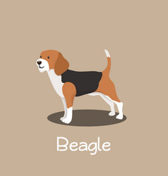 an depicting beagle dog cartoon vector image vector image