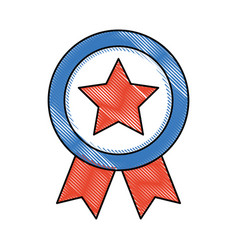 american medal with star vector image