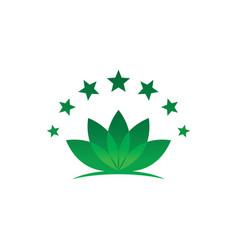 lotus leaf star logo image vector image vector image