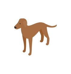 Ridgeback dog icon isometric 3d style vector image vector image