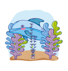 Cute dolphin animal with seaweed plants vector