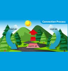 Diagram showing con process vector