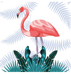 exotic and tropical bird vector image