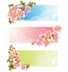 flower bloom vector image