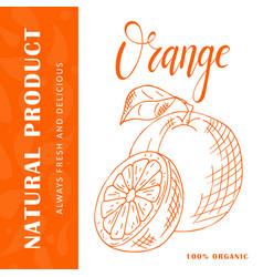 fruit element of orange hand drawn icon vector image