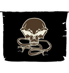 stylized human skull vector image vector image