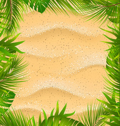 beautiful frame with sandy texture and exotic vector image vector image