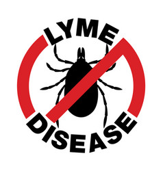 Anti lyme disease tick bite icon vector