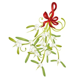Christmas mistletoe vector