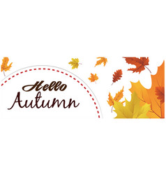 hello autumn semicircle maple leaf background vect vector image
